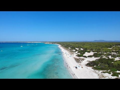 Es Trenc | Famous beach in Mallorca